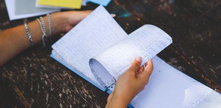 Anleitung: Tagebucheintrag ansehen/übernehmen