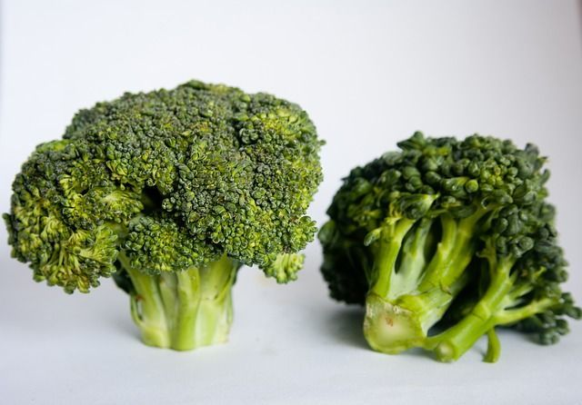 Broccoli frisch