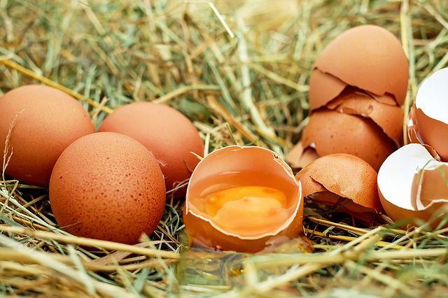 Wieviele Kalorien hat ein Ei?