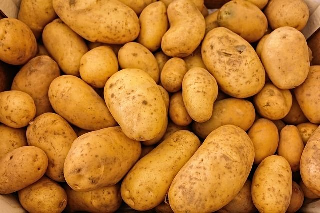 Kartoffeln ungeschält frisch (1 Stück = ca. 100g)
