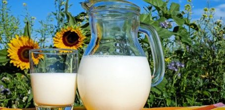 Ist Milch zum Abnehmen geeignet?